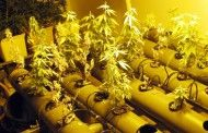 Tres detenidos e incautados más de 16 kilos de hachís, 117 de marihuana y 737 gramos de cocaína en la A-4