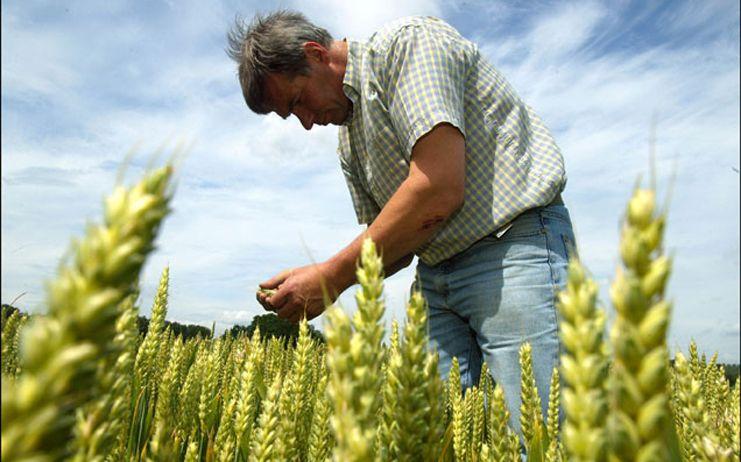 El Gobierno de Castilla-La Mancha destaca que nunca antes se había destinado más dinero a los jóvenes agricultores y ganaderos que hoy