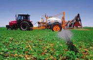 El Gobierno regional seguirá trabajando para que el cultivo de las aromáticas sea fuente de riqueza y de desarrollo rural en la comarca de La Alcarria