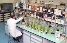 El Gobierno regional recibe 295 solicitudes para la nueva convocatoria de ayudas a proyectos de investigación dotada de ocho millones de euros