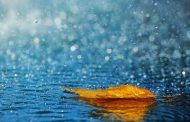 La gota fría será torrencial y dejará más de 300 litros en menos de 24 horas