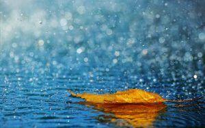 La lluvia fundirá la nieve de 'Filomena' desde el miércoles