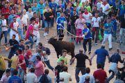 Suspendidas las fiestas de San Julián y San Mateo de 2020