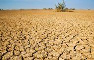 La provincia de Guadalajara, entre las zonas más afectadas por la escasez de lluvia
