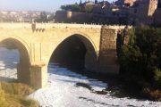 Plataforma de Toledo en Defensa del Tajo vuelve a manifestarse este sábado ante el estado