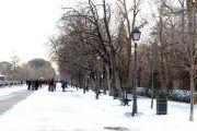 Cerca de 230 alumnos afectados en la provincia de Albacete por la nieve, que hace cancelar 17 rutas