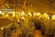 La Guardia Civil desmantela dos laboratorios de marihuana en Torralba de Calatrava y se incauta de 117 plantas
