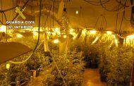 Detenidos 26 miembros de una banda internacional que traficaba con cannabis