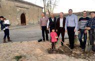 Prieto conmemora el Día Mundial del Árbol plantando un olmo autóctono en la Plaza 'Eugenio Cañas Melero' de Noheda