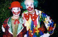Asociación Circos Reunidos demandará al Ayuntamiento de Toledo por la prohibición de circos animales en la ciudad