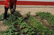 Cruz Roja pondrá en marcha el proyecto 'Recualificación para personas afectadas por la crisis' en Manzanares