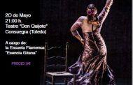 Festival de baile Flamenco a beneficio de ADEMTO en Consuegra