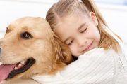 El Gobierno de Castilla-La Mancha extiende la terapia asistida con perros al ámbito de la discapacidad
