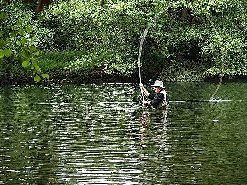 La Junta saca a información pública el borrador de la Orden de vedas de pesca para el año 2018 en C-LM