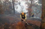El PP muestra todo su apoyo a los vecinos y al mismo tiempo ve con preocupación la gestión de la Junta en la extinción del incendio