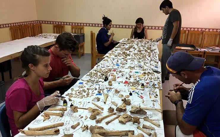 La Escuela de Medicina Forense estudia los enterramientos de la Cueva de Castillejo del Bonete en Terrinches