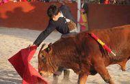 El PP defiende la Tauromaquia como eje vertebrador de la vida social y económica de los pueblos de Castilla-La Mancha