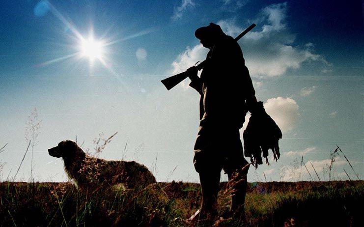 Tres detenidos en una operación por caza furtiva y robo de galgos de otras provincias, entre ellas Toledo