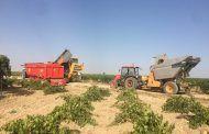 Archivada la querella de 2015 que acusaba a Asaja Toledo de falsificar una firma para crear la Lonja Agropecuaria