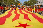 Asamblea Nacional Catalana: