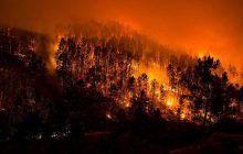 El Servicio de Urgencias y Emergencias 1-1-2 ha gestionado en menos de un mes la actuación de los bomberos en 15 incendios