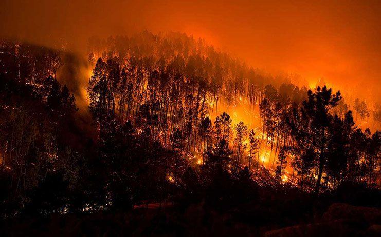 El Gobierno central invertirá 206.000 euros para minimizar los efectos del incendio de Campillo de Altobuey (Cuenca)
