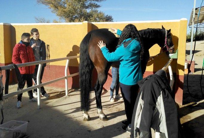 La hípica vuelve a marcar el inicio de las actividades para jóvenes de entre 16 y 18 años del programa 'Somos Deporte' en Cuenca