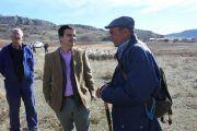 El Gobierno de Castilla-La Mancha anuncia un millón de euros de ayuda a los ganaderos de extensivo a través de la línea de la 'oveja bombera'