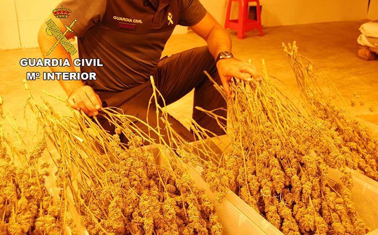 La Guardia Civil se incauta de 44 kilogramos de marihuana en Fuentenovilla y detiene a dos personas