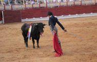 Leandro Gutiérrez abre la puerta grande de Las Cruces en el certamen 'Guadalajara busca torero'