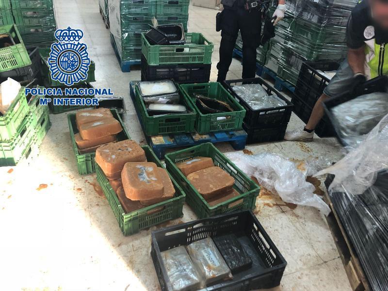 Media tonelada de cocaína en bloques de comida congelada