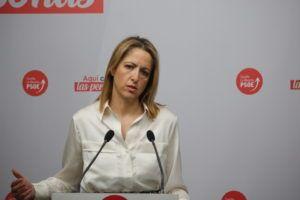 Maestre destaca el camino de la recuperación de la mano de los fondos europeos y la vacunación