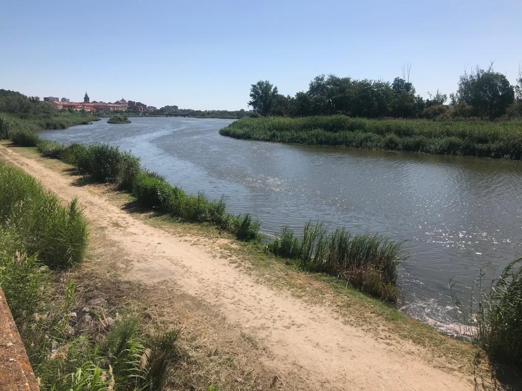 El Gobierno de Castilla-La Mancha declara de interés regional la zona regable de Almoguera, margen derecha del río Tajo en la provincia de Guadalajara
