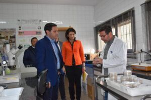 Los investigadores del CIES de Quintanar publican dos artículos en revistas internacionales sobre el champiñón