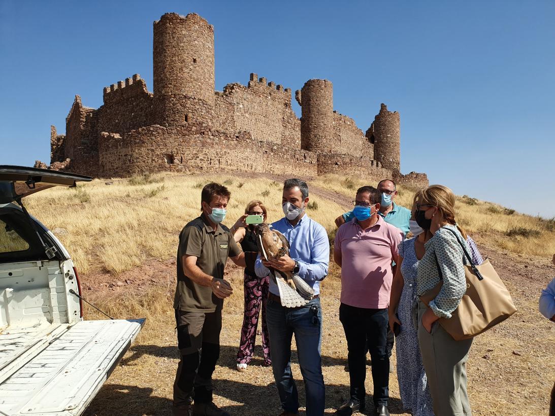 El Gobierno de Castilla-La Mancha actualiza los planes de recuperación y conservación de sus especies protegidas más emblemáticas y promueve dos nuevas protecciones