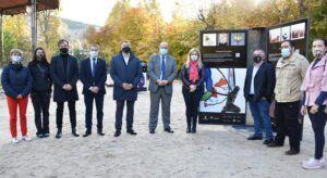 El Gobierno de Castilla-La Mancha trabaja en el diseño de una estrategia integral para impulsar al sector de la artesanía en la región