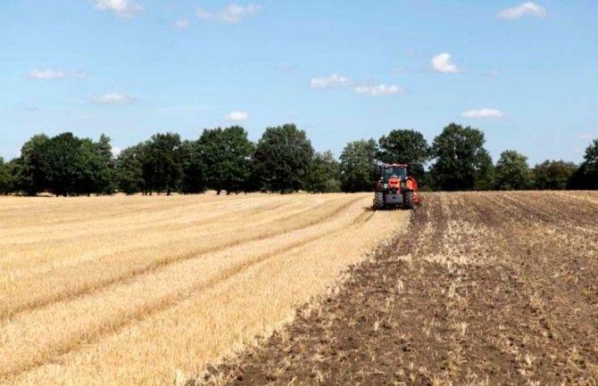 Más de 25.000 agricultores y ganaderos de la provincia reciben cerca de 95 millones de euros procedentes de tres líneas de ayudas