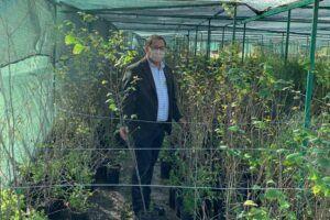 El Gobierno regional pone en marcha el programa de subvenciones dirigido a los ayuntamientos para dotarles de plantas ornamentales