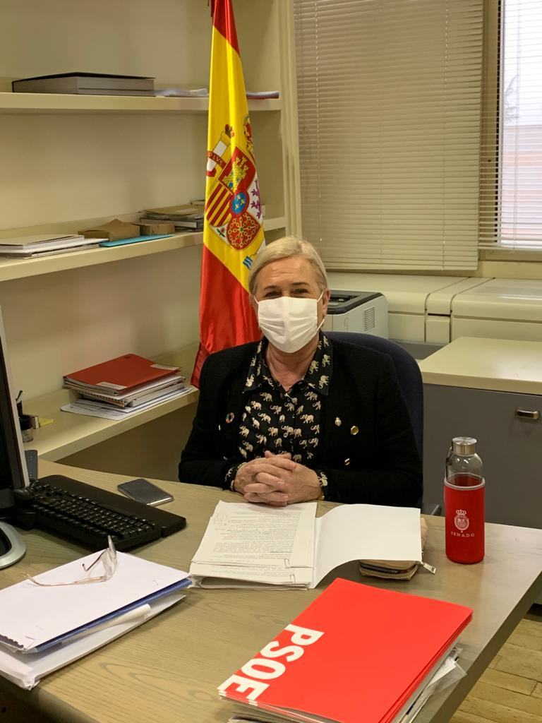 """Carmen Mínguez da cuenta de la aprobación de los PGE """"más sociales de la historia"""", con el respaldo de catorce fuerzas políticas en el Senado"""
