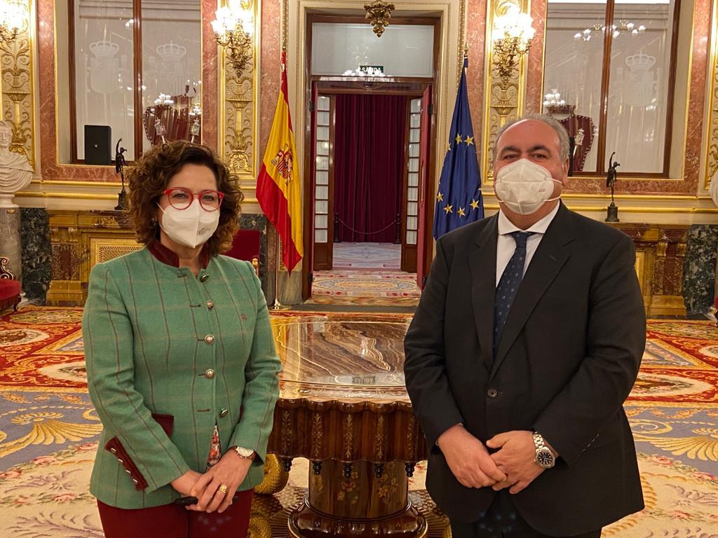 Tirado y Riolobos lamentan que los diputados del PSOE hayan votado hoy en contra de resolver los problemas y garantizar el futuro de la provincia