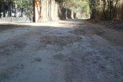 Aprobada por unanimidad la moción del Partido Popular para arreglar los caminos públicos rurales de Albacete más afectados por la borrasca Filomena