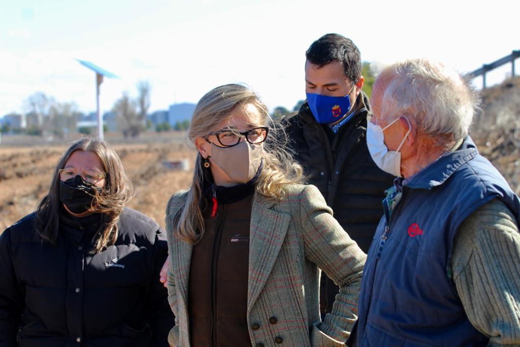 Merino exige a Page ayudas para paliar las graves pérdidas que están sufriendo los agricultores por la sobrepoblación de conejos en la región