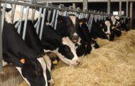 El Gobierno publica la orden de módulos del IRPF 2020 que recoge importantes reducciones para agricultores y ganaderos