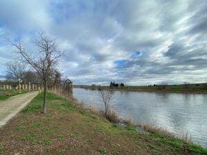 """Paños (Cs) insiste en que Tolón debe reactivar el Consejo del Pacto de Toledo por el Tajo: """"el río necesita menos palabras y más acción"""""""