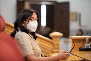 Ciudadanos pregunta en Urbanismo por la línea de alta tensión al nuevo hospital a su paso por Azucaica