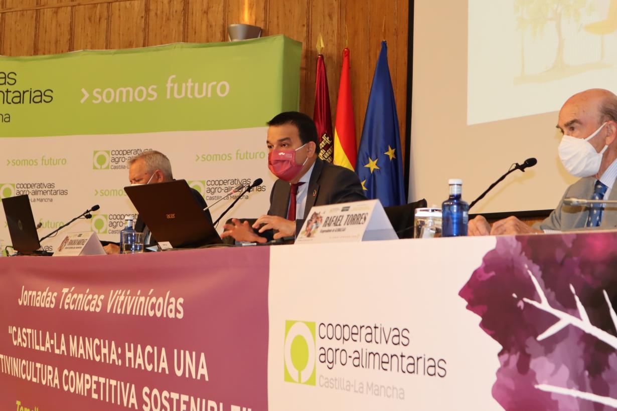 """El Gobierno de Castilla-La Mancha pide """"presumir y sacar la cabeza"""" para que la región lidere la gestión del sector vitivinícola a nivel nacional"""