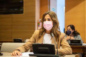 Romero insta al Gobierno a priorizar los 70.000 millones de euros de los Fondos Europeos para potenciar la industria y el empleo en la Comarca de Puertollano
