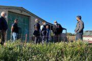 """Serrano: """"La situación de nuestros ganaderos es insostenible por el abandono de Page al mundo rural y su inacción ante los recortes de la PAC"""""""