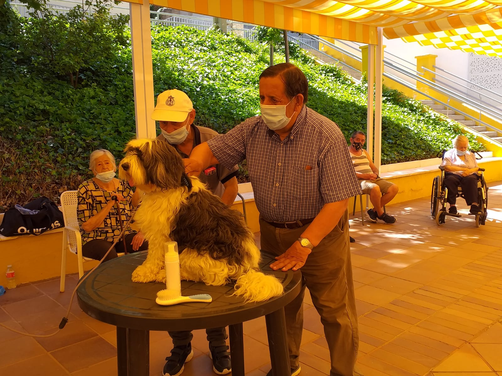 La Diputación organiza un programa de actividades para celebrar en la Residencia Provincial la festividad de su patrón