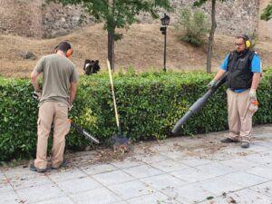 El Ayuntamiento apoya los Programas Específicos de Formación Profesional de Jardinería del Colegio Virgen del Carmen
